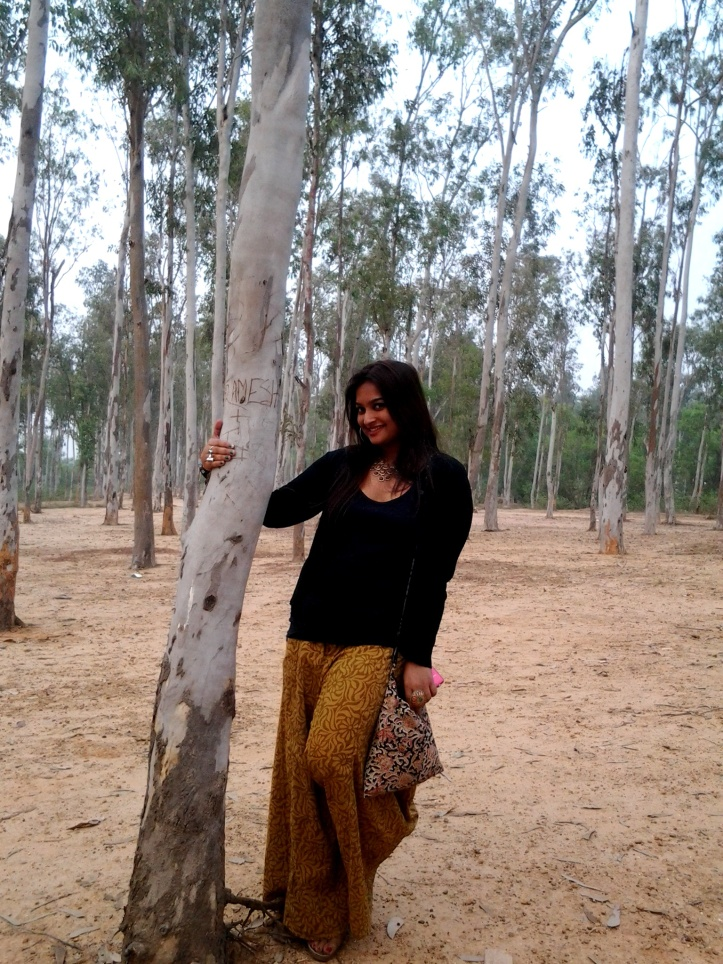 The woods of Palash and Sal