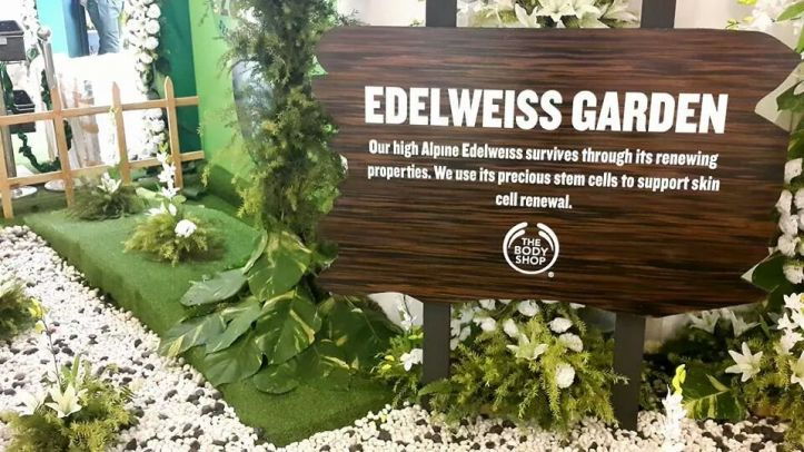 Edelweiss Garden recreated